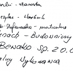 Akty erekcyjne (20.10.09)-2